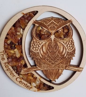 Picture of Amber Owl Magnet