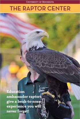 Picture of Live Bald Eagle Online Program - Raptors of the Midwest