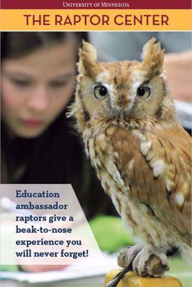 Picture of Live Raptor Online Program - Raptors of the Midwest
